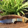picture jasper hunting knife
